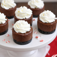 Mini Peppermint Mocha Cheesecakes